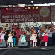 Koncert Plenerowy